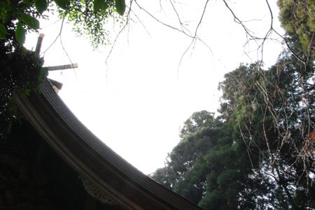 011kushifuru_15.jpg