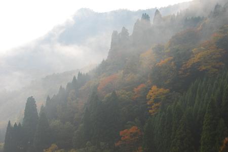 kouyou_46.jpg